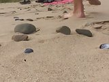 Nudist Beach Whiteford Sands Part 2